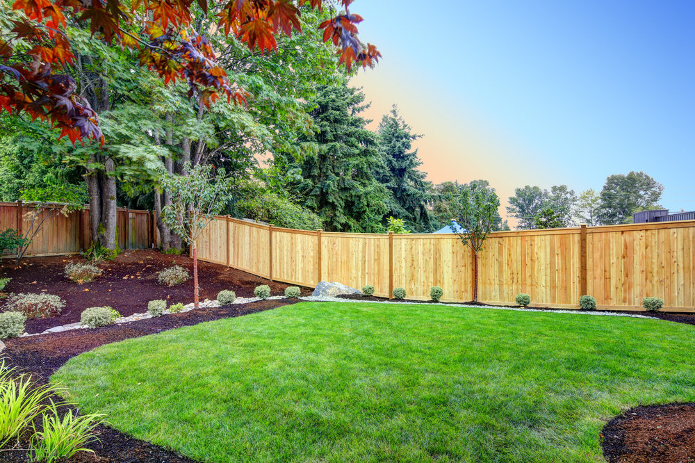 Landscape design fence privacy plantings