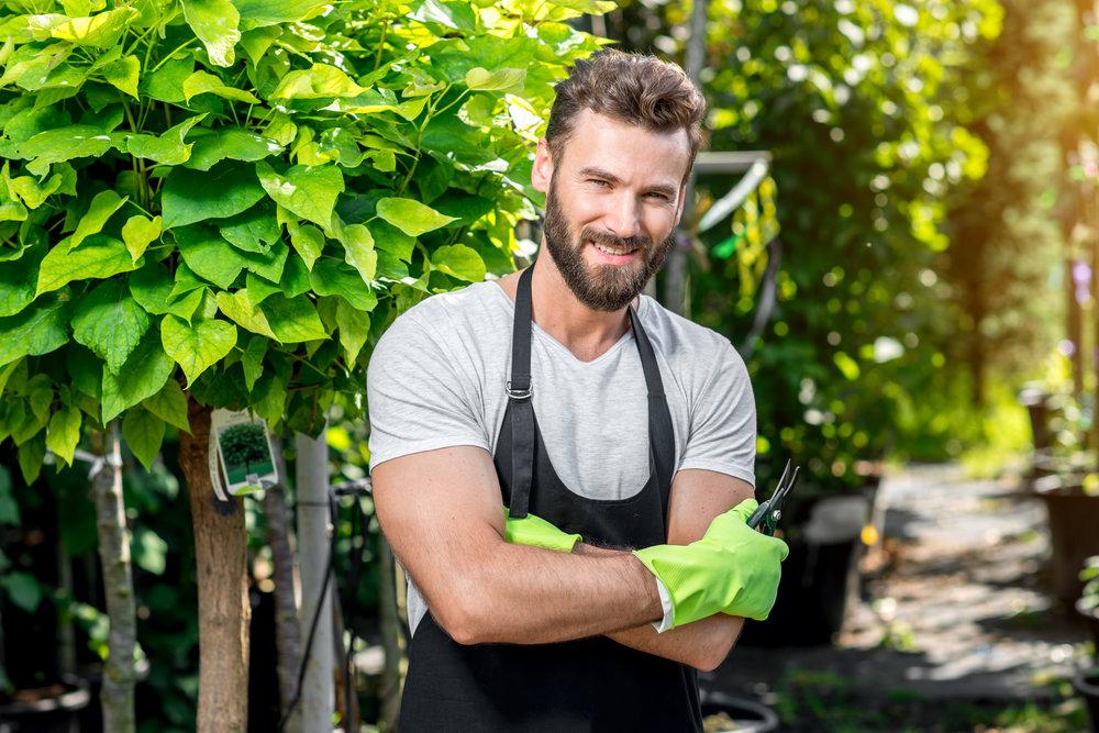 landscaper planting employee design arborist.jpeg