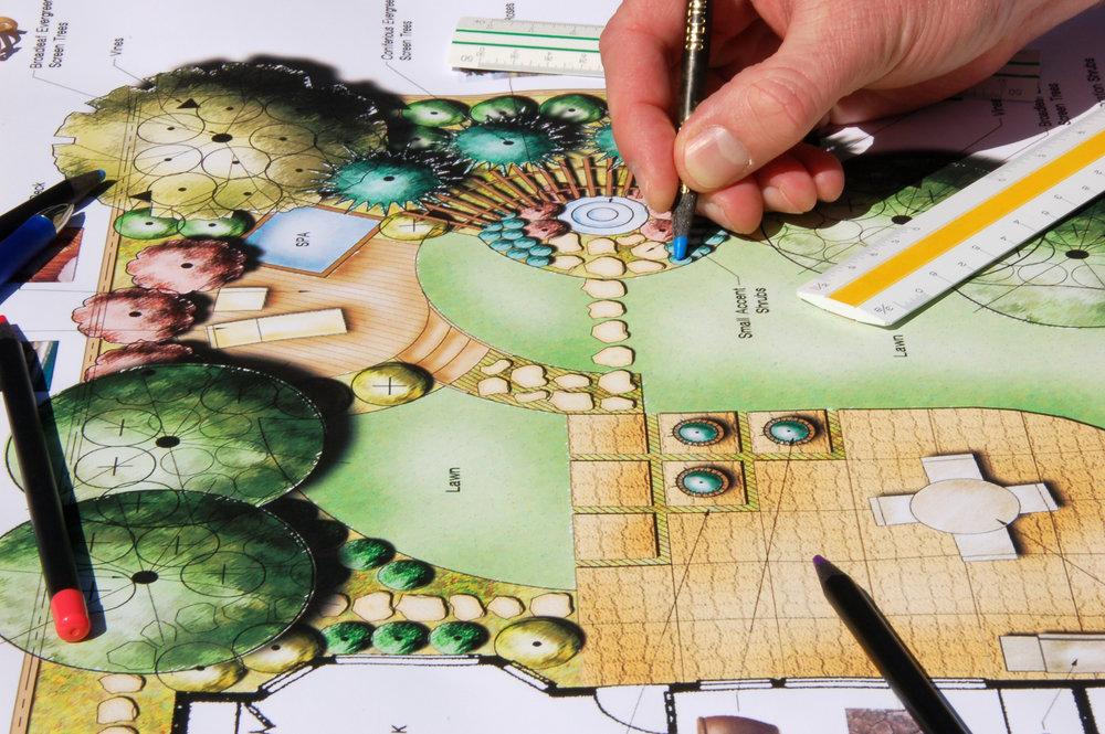 Landscape Design Hand Drawn.jpg