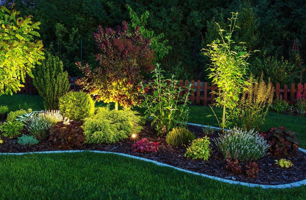 landscape lighting plantings landscape design.jpeg