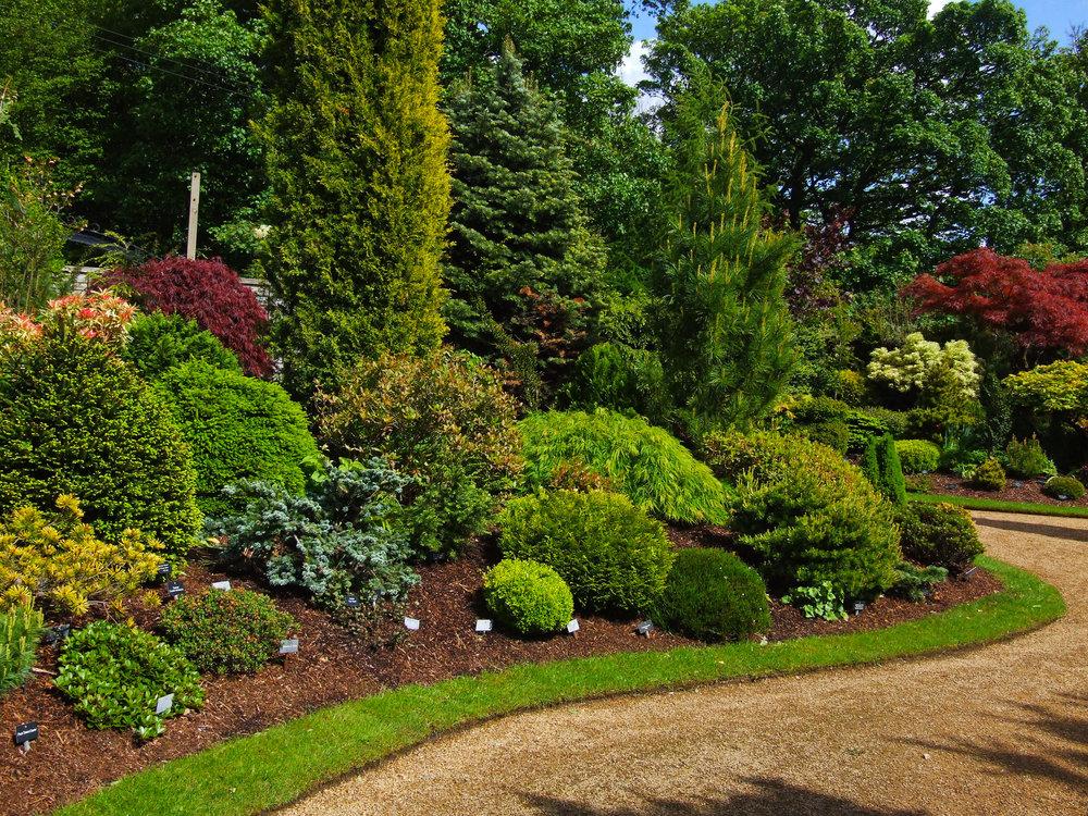 mulching pruning weeding mulching landscape refresh cleanup