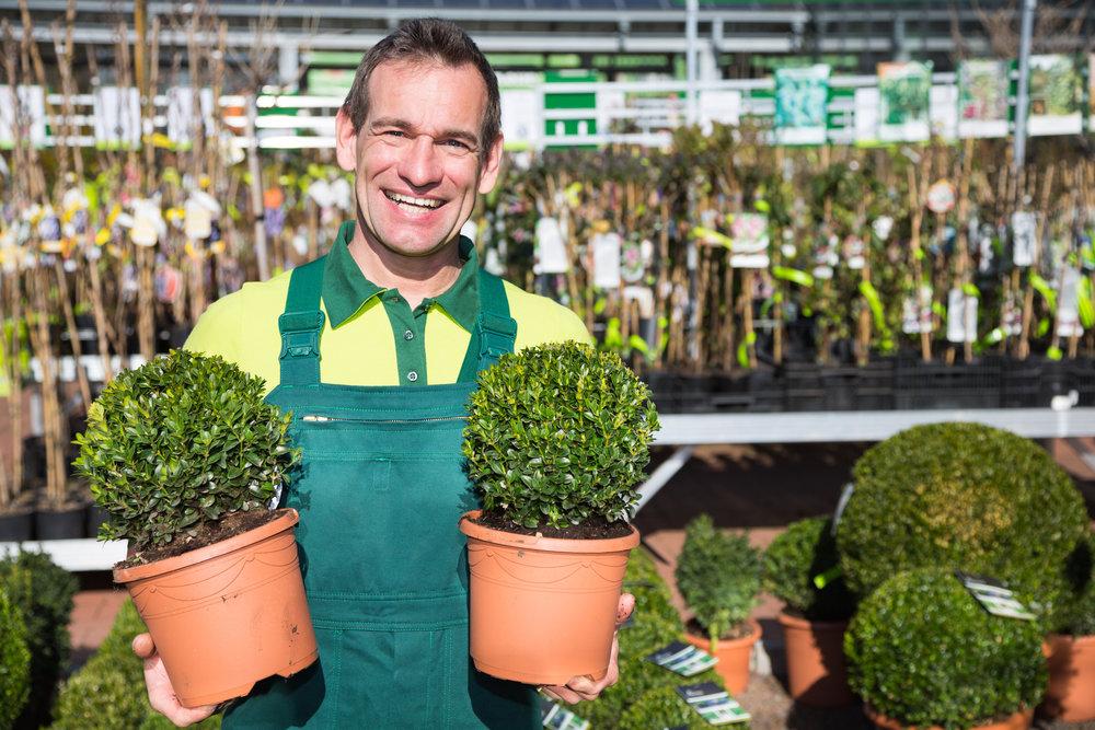 landscape plants employee helpful friendly staff.jpeg