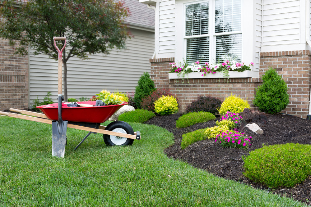 mulch mulching edging pruning cleanup