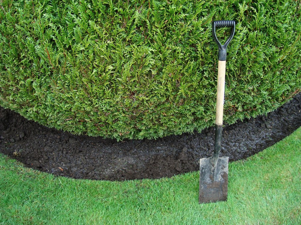 edging landscape bed maintenance prune pruning