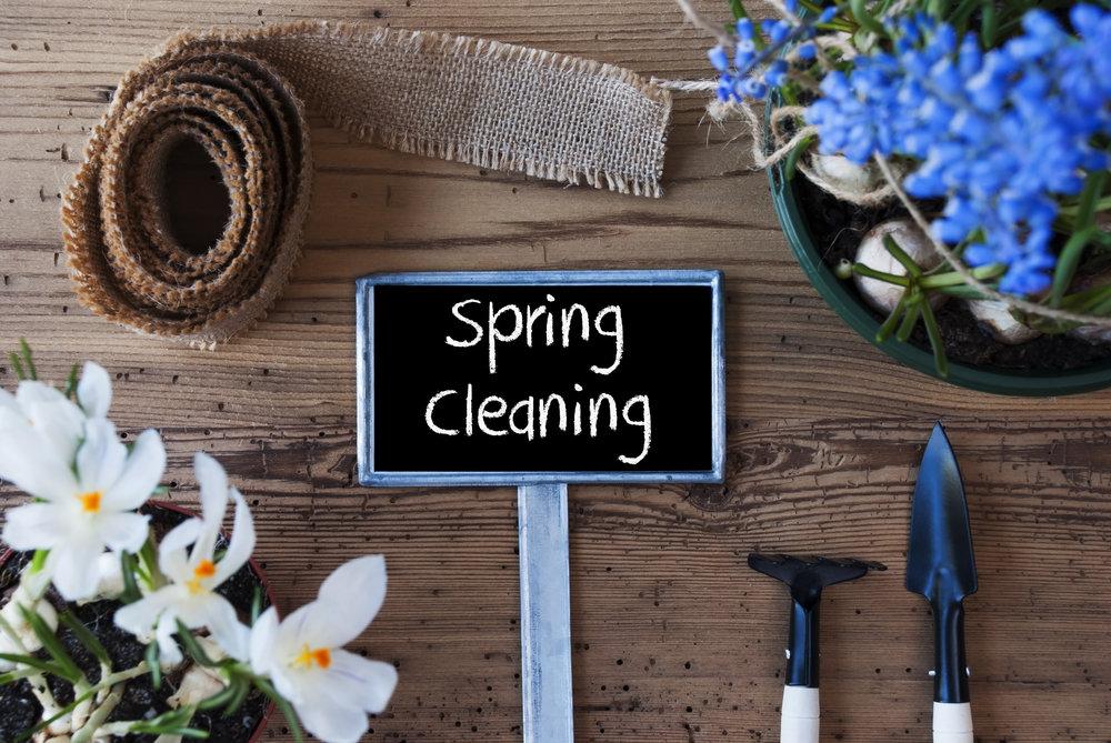 spring cleanup landscape refresh
