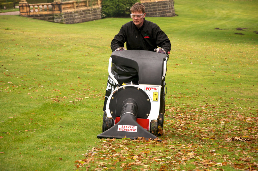 leaf collection fall cleanup vacuum machine
