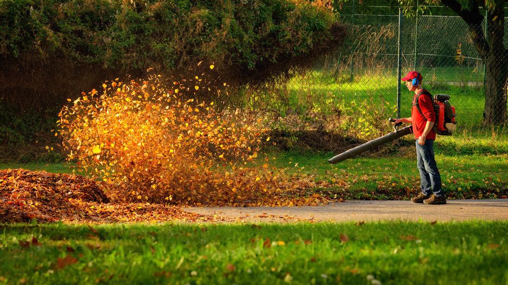 fall cleanup blowing blower rake leaf pickup