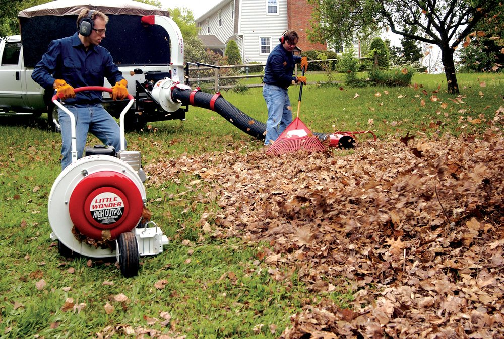 fall cleanup blower crew leaf pickup lawn
