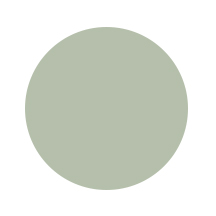 Paper Color Circles sage.jpg