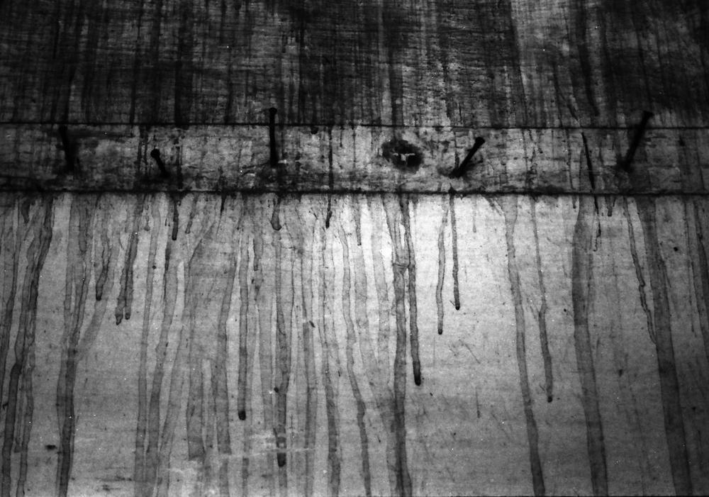 NAIL, SILVER GELATIN PRINT, 2008