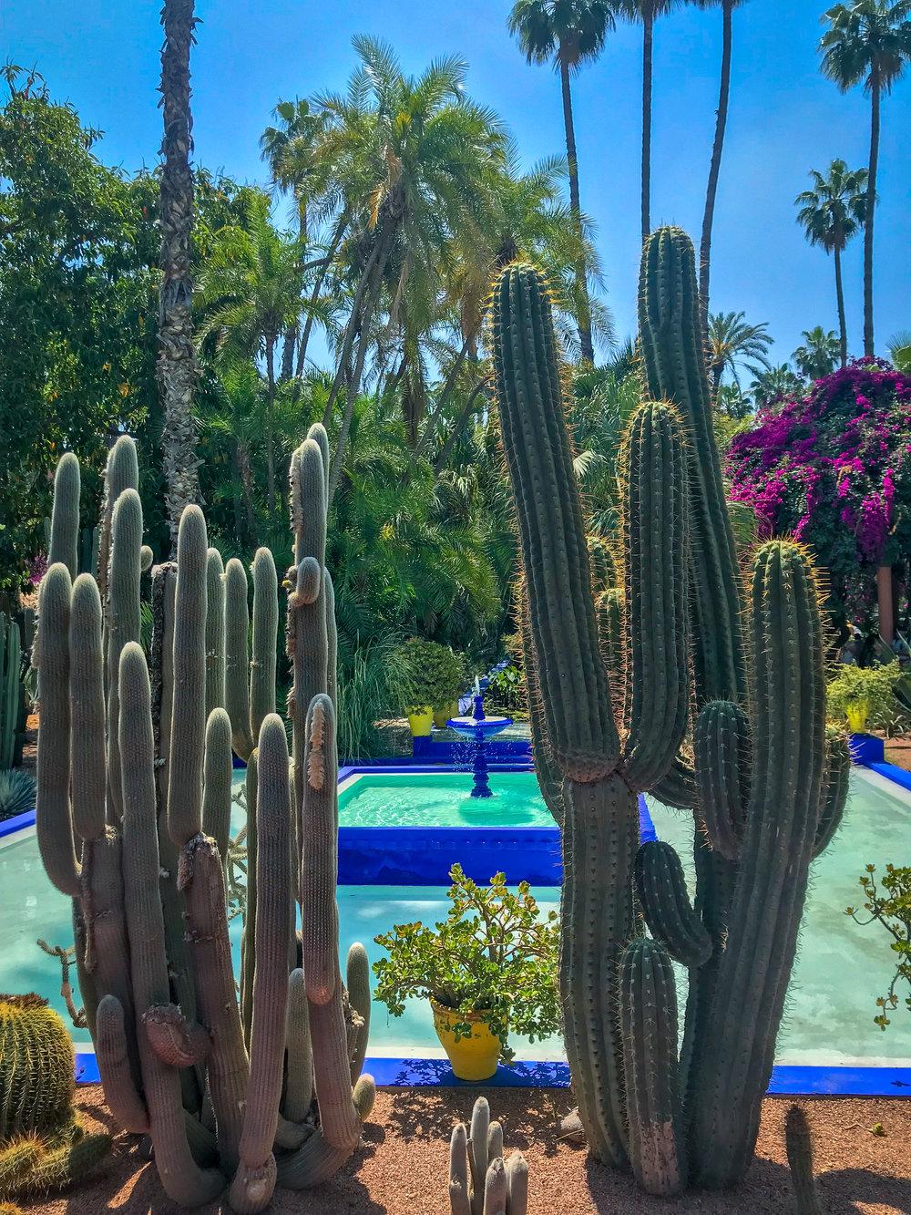YSL Gardens - Marrakech Morocco | coupleinthekitchen.com