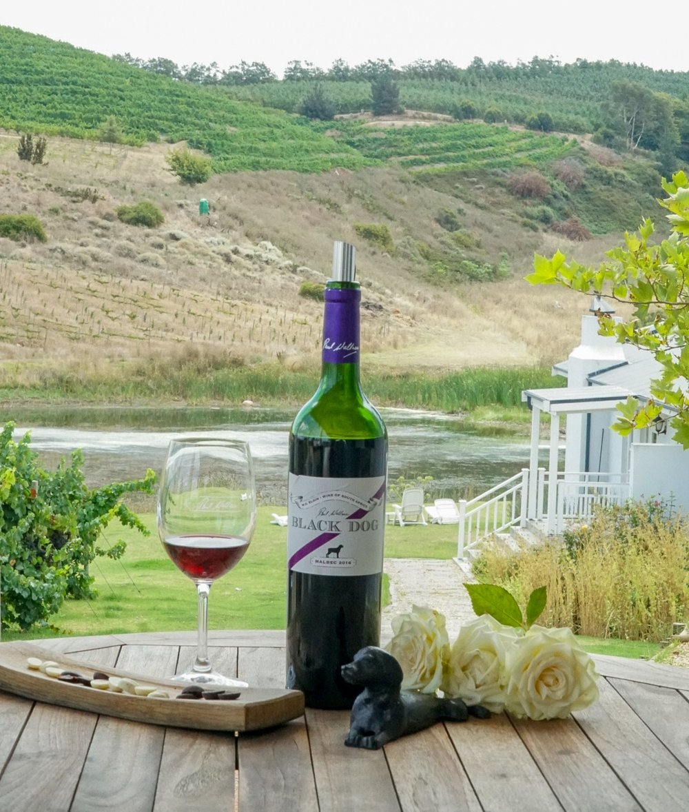 Can%27t+Miss+Wineries+in+South+Africa+%7C+www.coupleinthekitchen.jpg