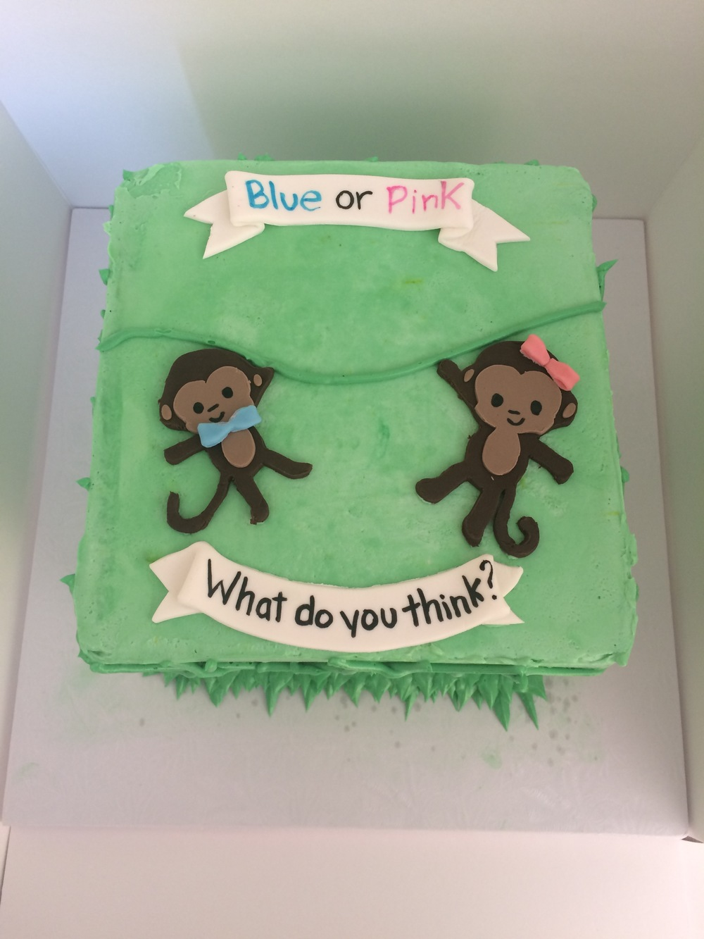 Monkey Gender Reveal | Sugar Lab Bake Shop