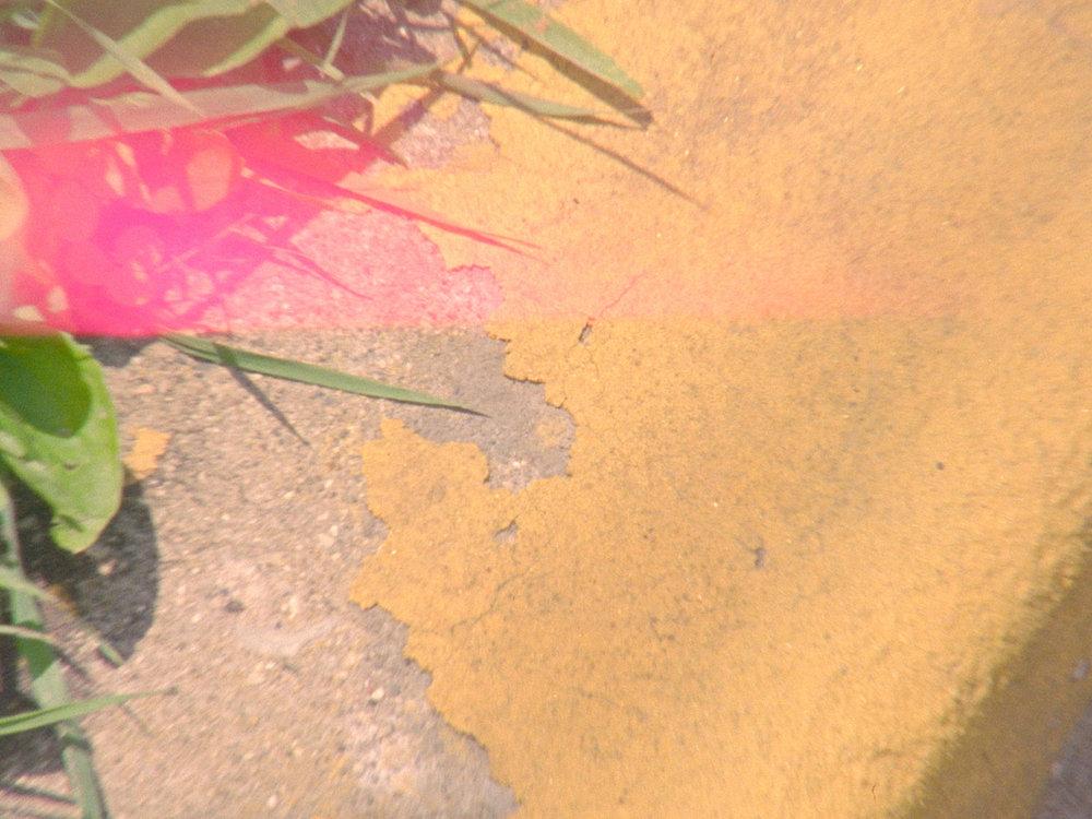 Garden - still 4.jpg