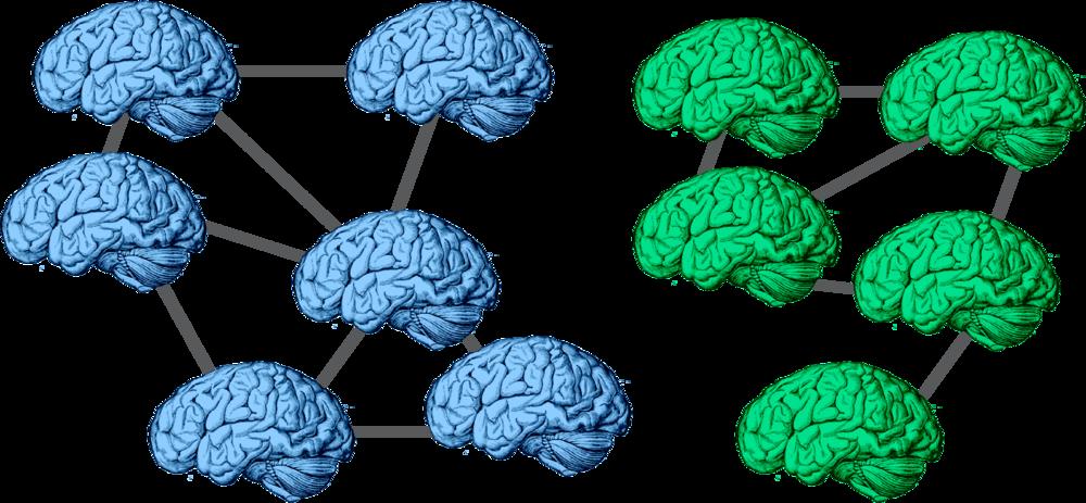Brain Representations Of Social >> Research Csnl