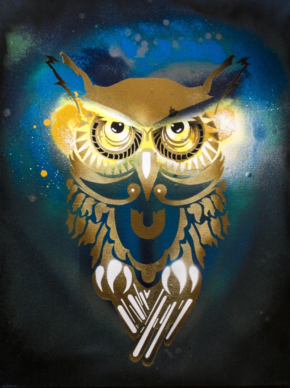 Patient Owl
