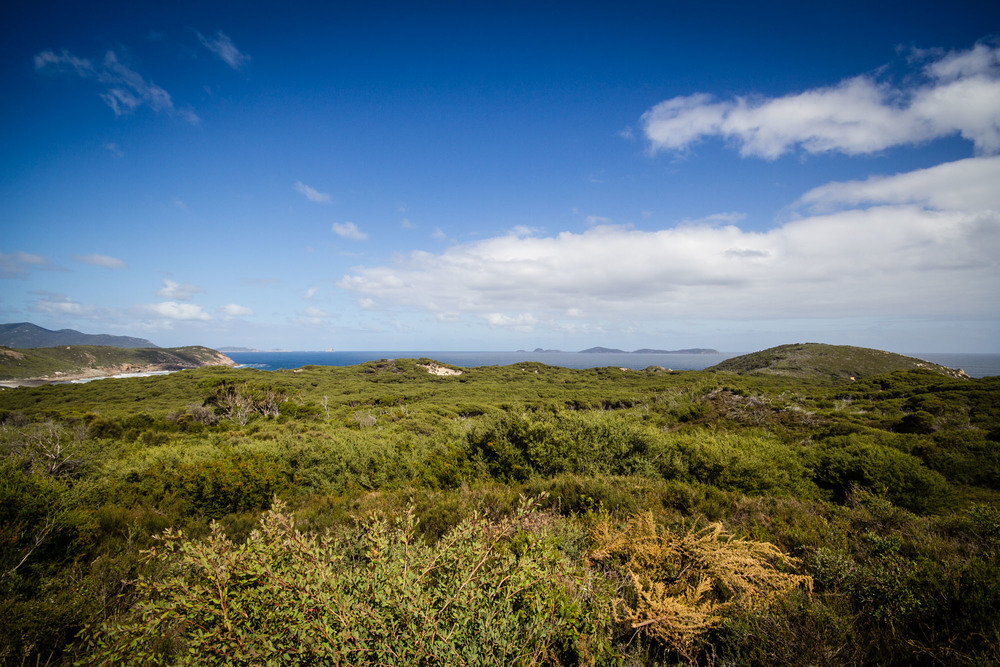 Entering 'The Prom' on Wilsons Promontory Road