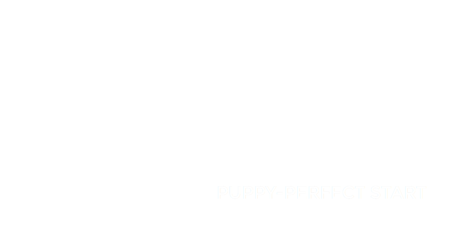 Ann Jackson's Puppy-Perfect Start