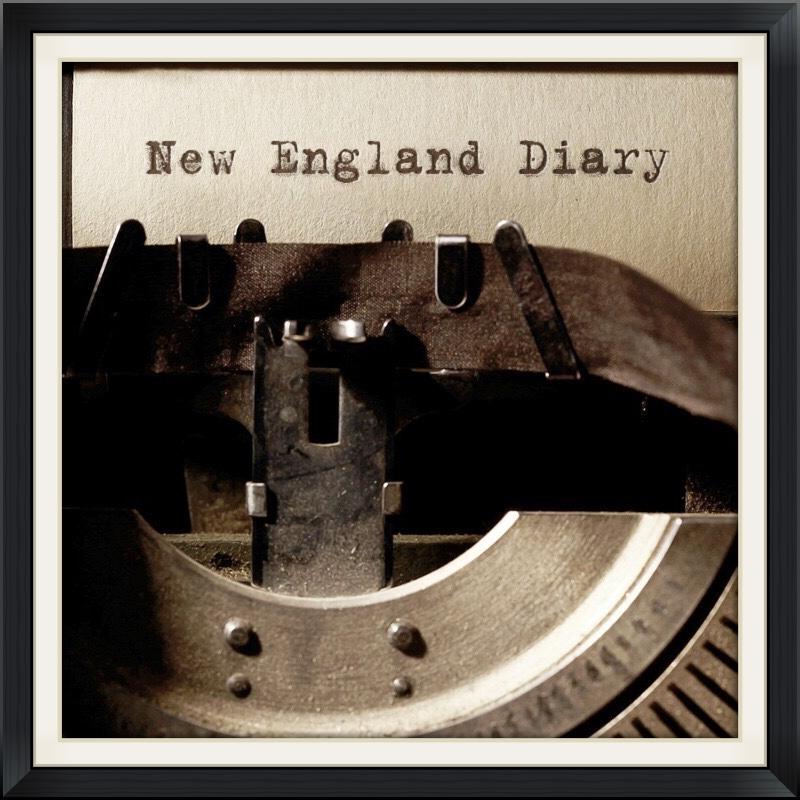 Newenglanddiary.com