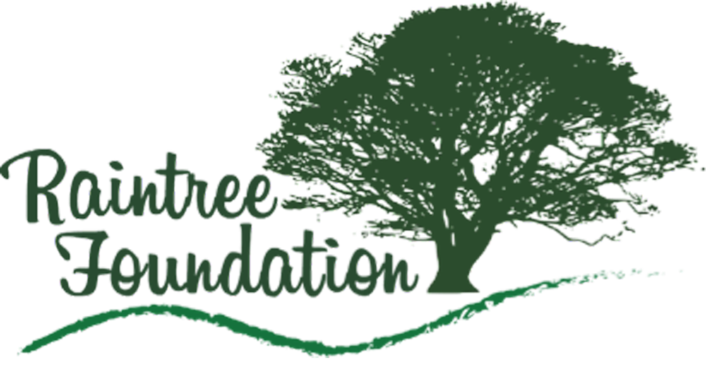 Raintree_Foundation_logo copy.png