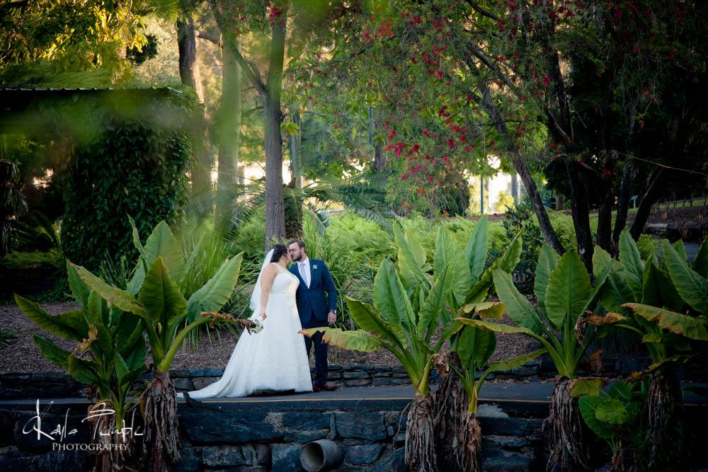 Brisbane Wedding Photographer-115.jpg