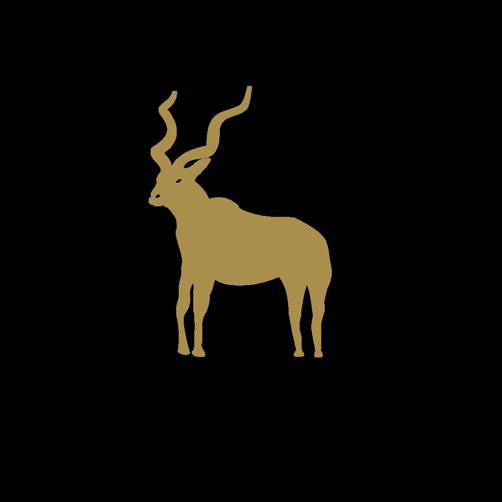SPONSORS Logo in AI FILE-18.png