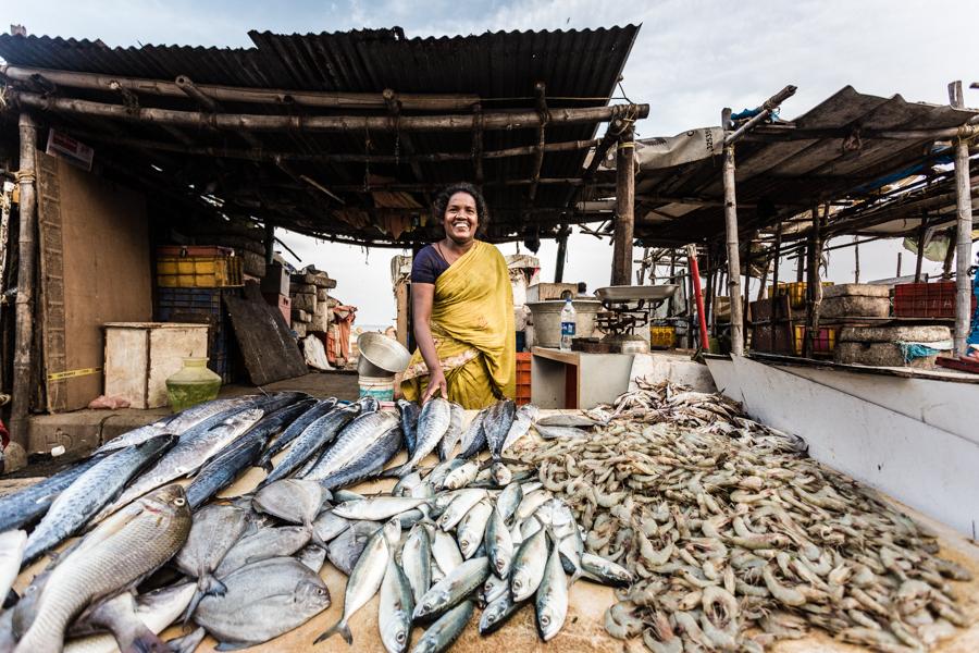 Fishmonger at the fish market adjacent to Chennai's Marina Beach.
