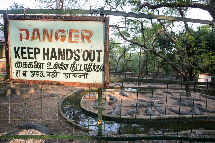 Enclosure exhibiting Indian crocs.