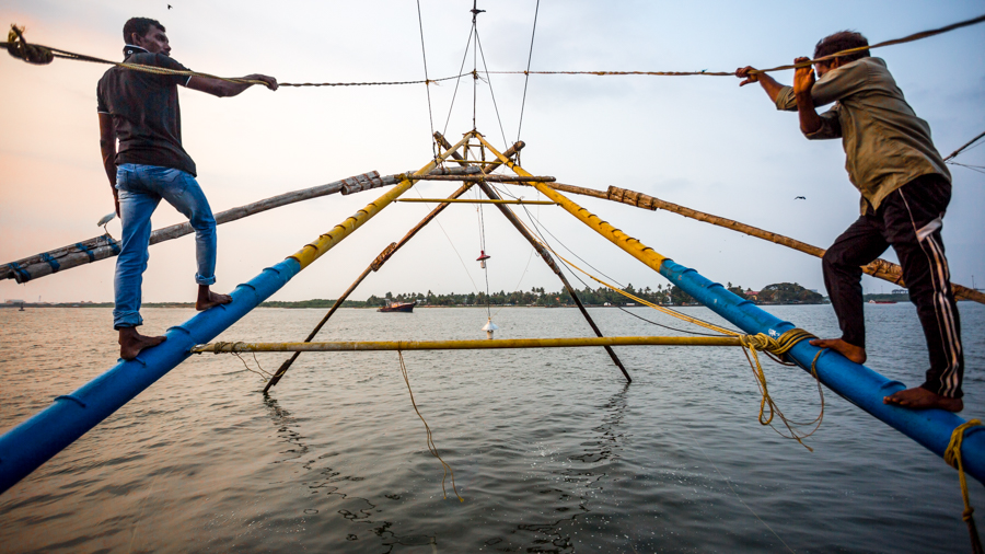 Kochi fisherman raising a shore operated lift net (known informally in India as a Chinese fishing net).