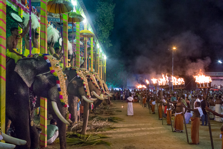 A Ganesh temple ceremony in Kochi. Ganesh is an elephant-headed deity associated with new beginnings. This ceremony boasted 19 elephants.