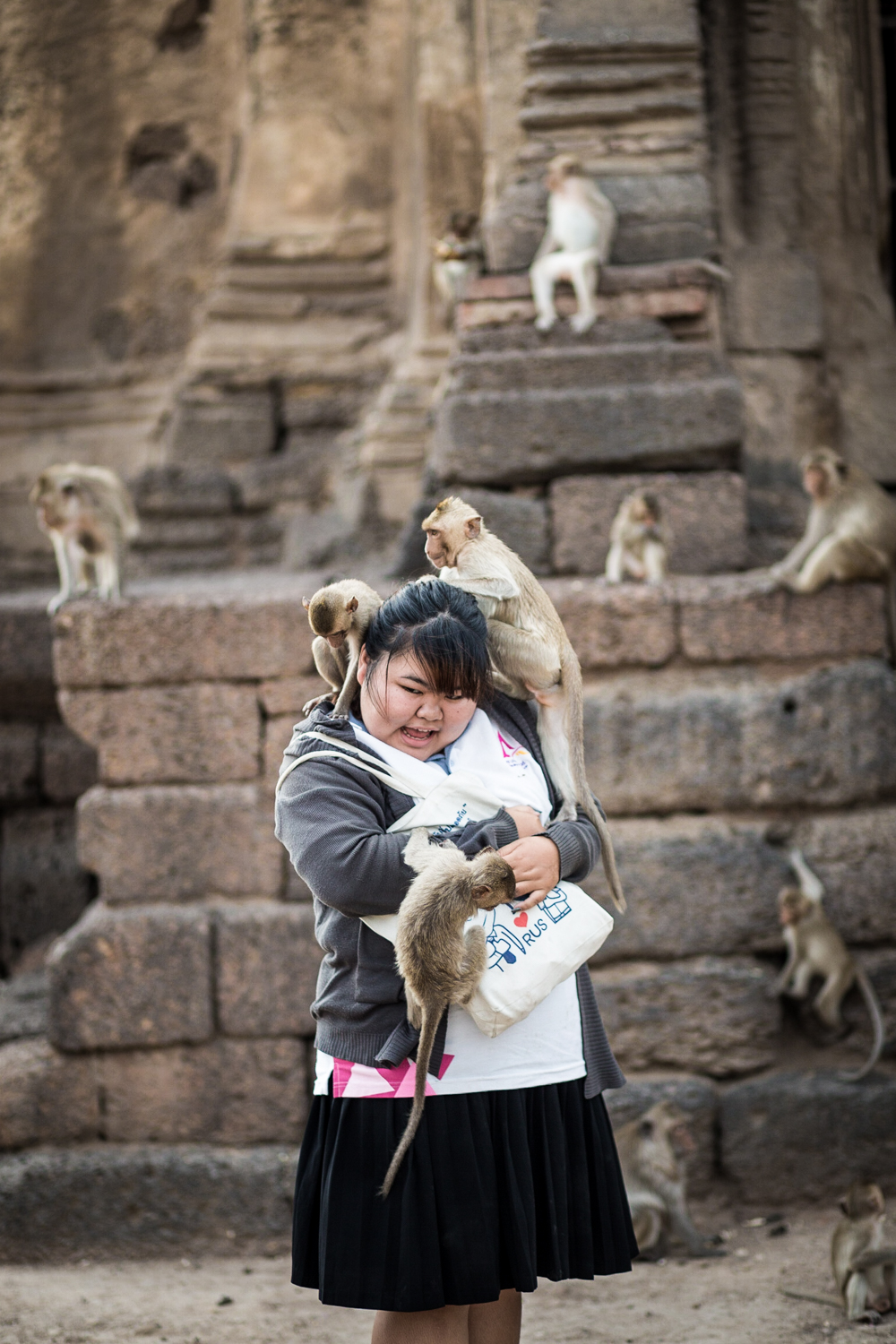 This is what happens if you feed the monkeys.