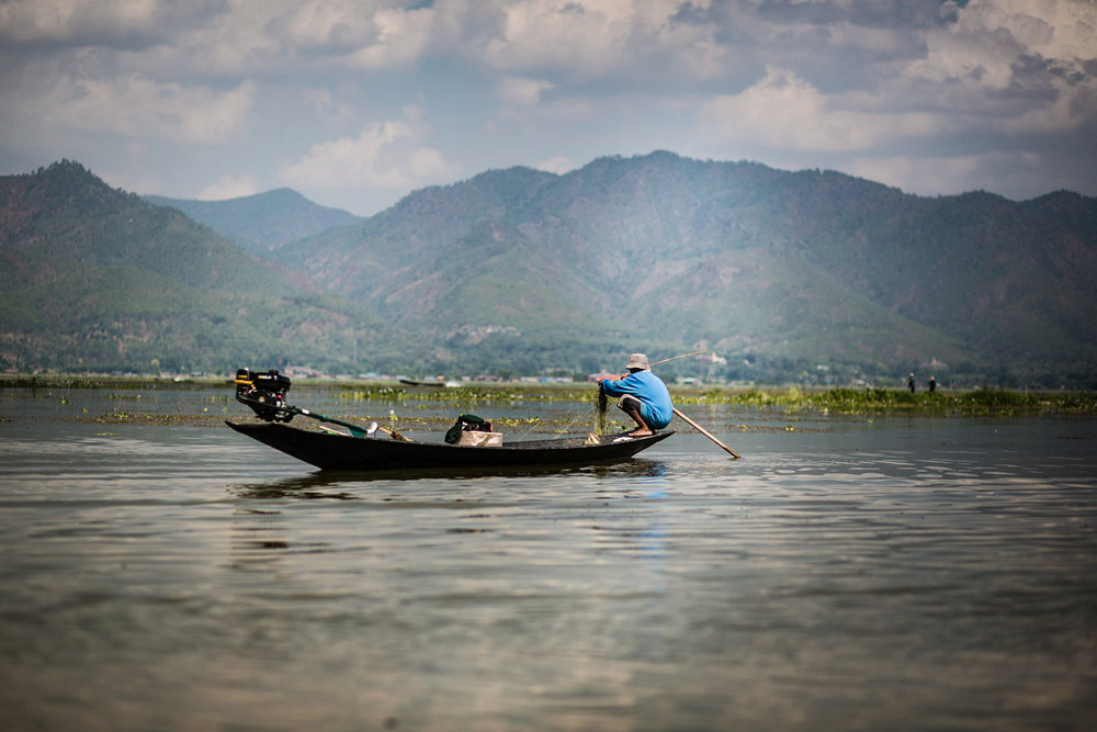 A fisherman on Inle Lake. The lake and area around it is a national reserve containing a number of endemic species.