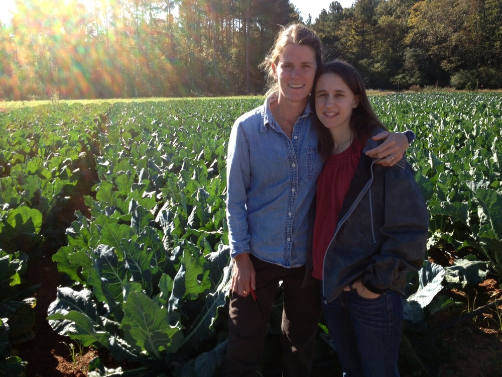 Celia-and-Liz-Brassicas-2012.jpg