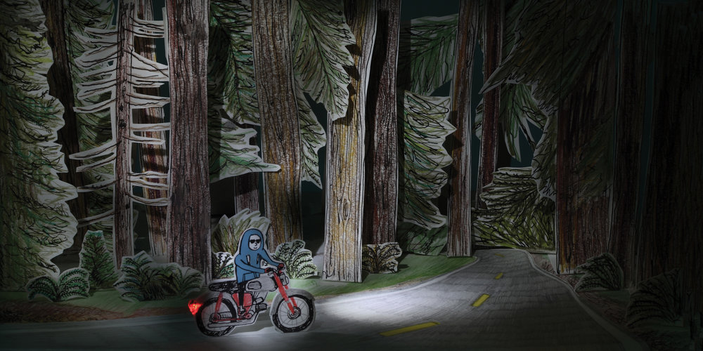 double+page+forest+bike.jpg