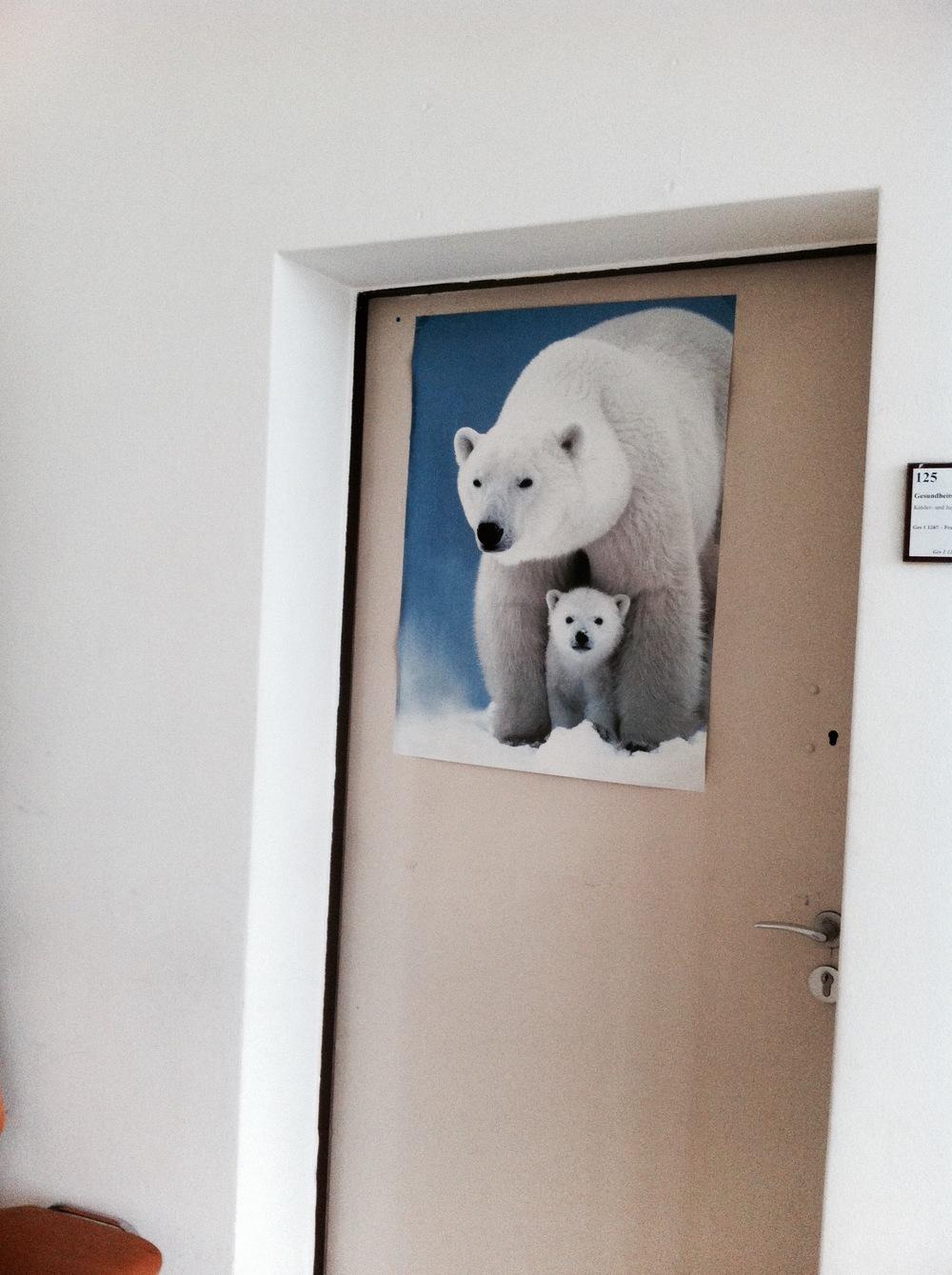 Selbst die Eisbären freuten sich für mich. Bildete ich mir wenigstens ein.