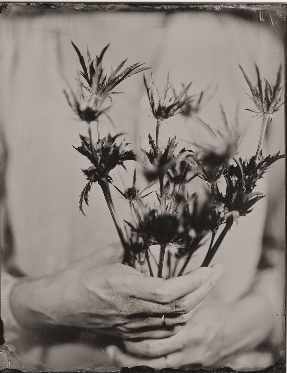 flower2-4.jpg
