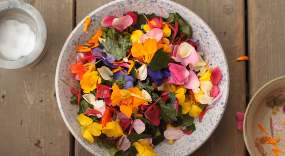 VIDEO: EDIBLE FLOWERS