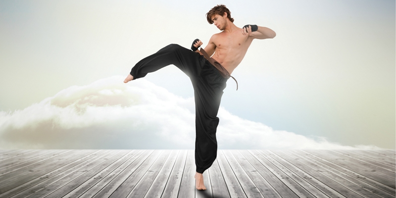 Mastering the Force: The Martial Arts Hold Deep Inner Lessons by Eric C. Stevens