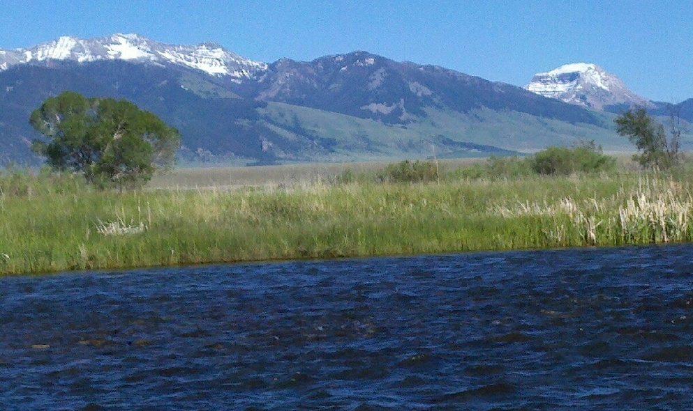 The Madison River near Ennis, MT