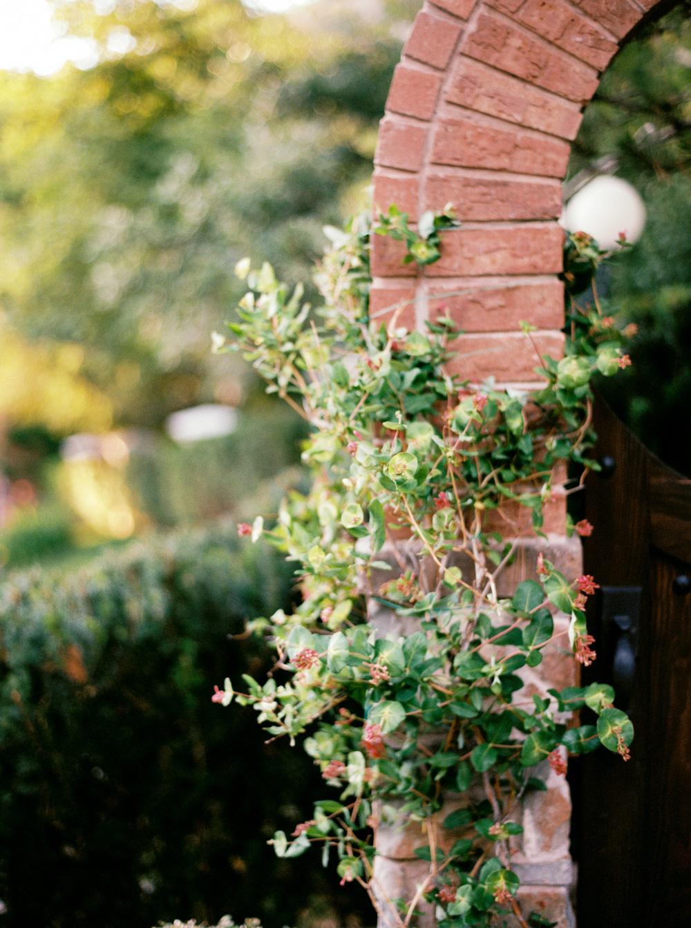 Jacque Lynn Photography | English Garden Wedding Inspiration | Michelle Leo Events | Utah Wedding Design and Planning