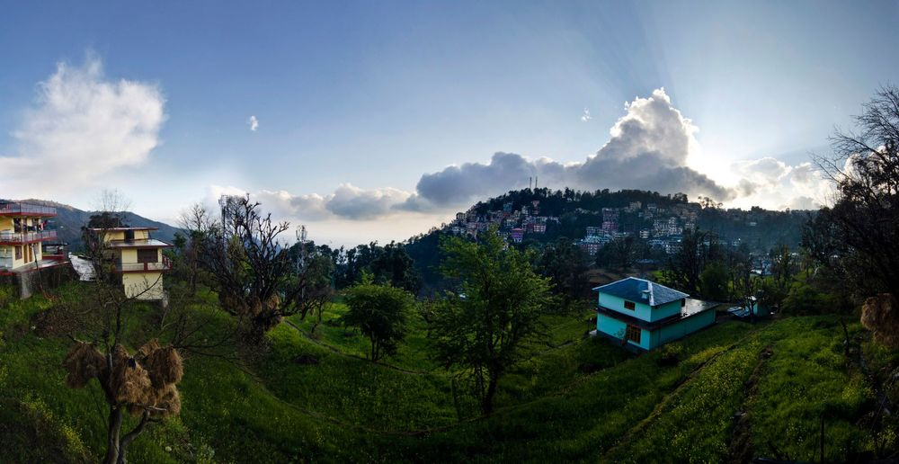 View from our home in Amdo Village, McLeod Ganj, Dharamsala, India. Photo by Will Strathman.