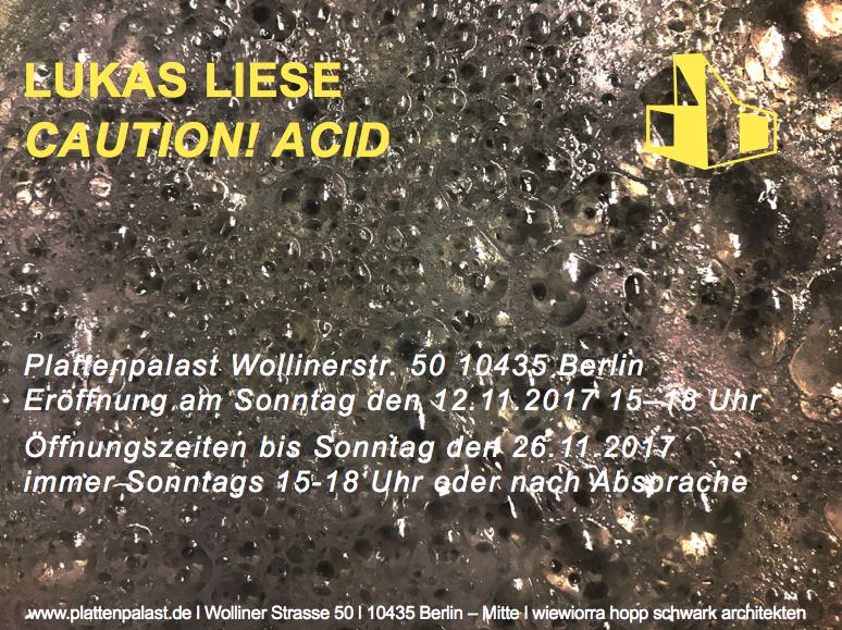 Lukas Liese Plattenpalast Caution Acid Einzelausstellung.png