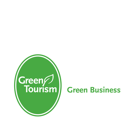 green-business-mark-up2.jpg