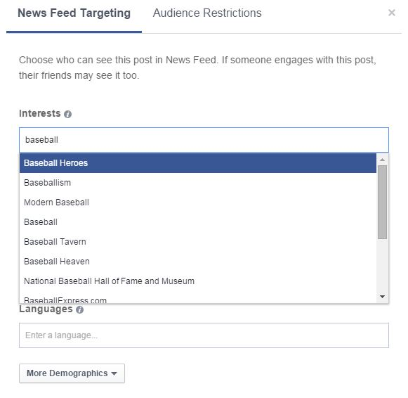 facebook preferred audience targeting