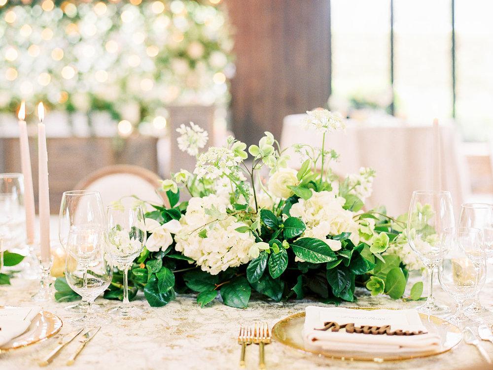 Nancy Ray Photography  | Wedding at  Old Edwards Inn