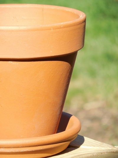 IMAGE via Pixabay /   Terra cotta pots are relatively inexpensive and can be purchased at just about any garden supply center. Plus, if this whole thing doesn't pan out, you have the thrill of smashing the pots against the ground to look forward to.