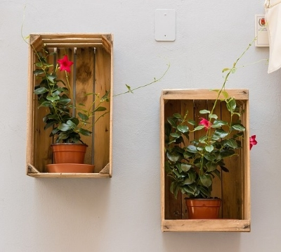 IMAGE via Pixabay  /    If your space is very limited, garden right on your walls! You can also offer to garden on someone else's behalf, such as an infirm neighbor who can't maintain the garden on their own anymore, or see if a local business will let you take over their storefront planters. See, you kind of do give a shit, you big lug.
