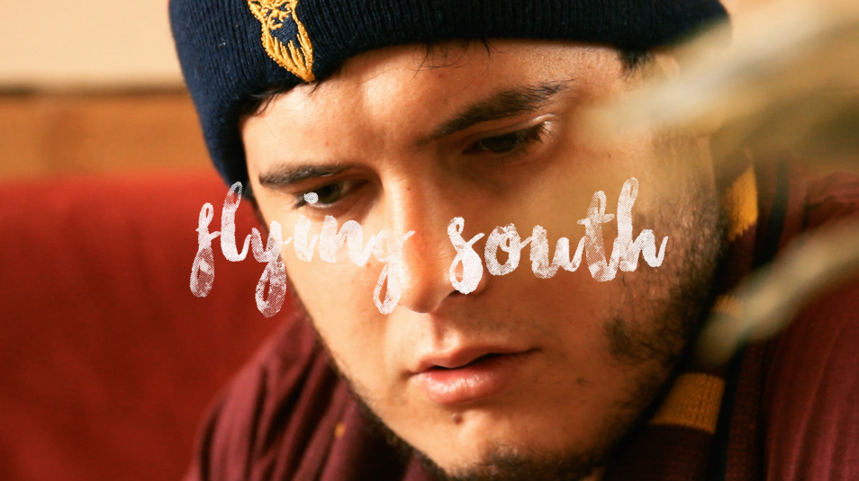 """""""Flying South"""" Film (98 seconds) Daisy Thor-Poet"""