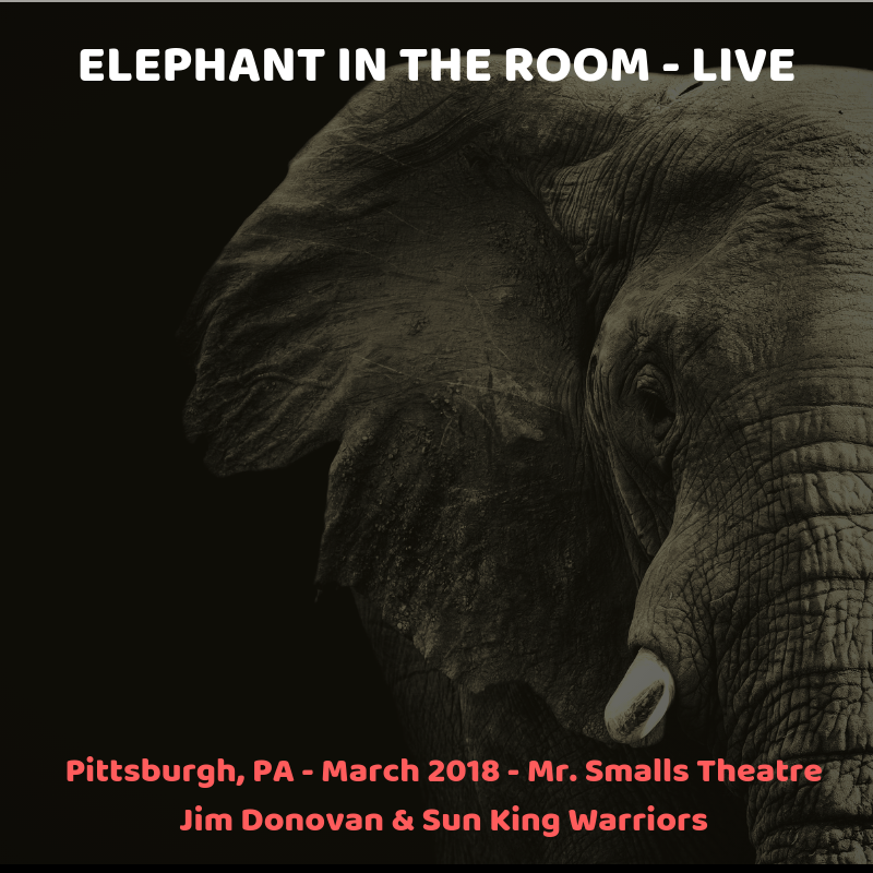 Elephant In the Room Live Pittsburgh March 2018.png