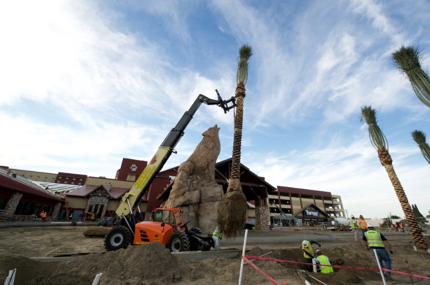 Exterior details: Palm trees being planted next to the iconic Great Wolf Lodge wolf Photo Credit: Great Wolf Lodge